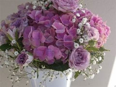 Franquicia Flor a Flor