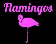 Franquicia Flamingos Vintage Kilo